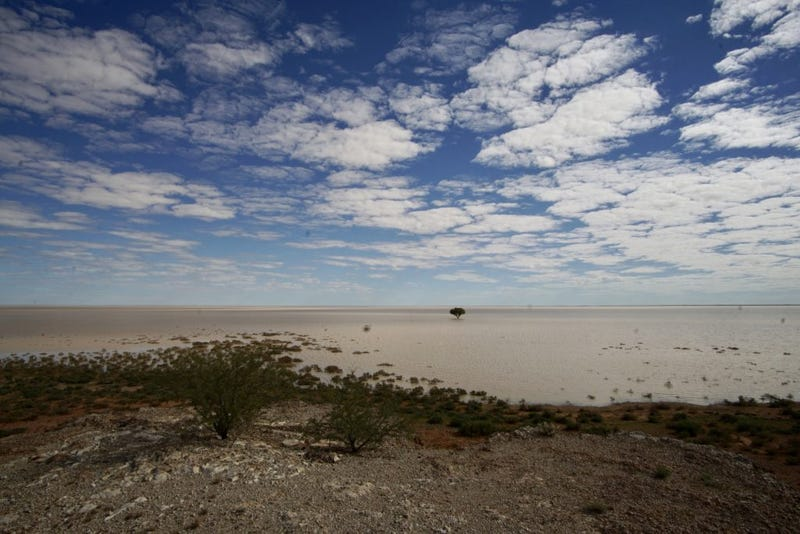 Illustration for article titled AWOL Around Australia... The Flooded Desert