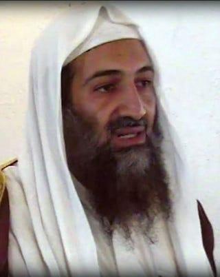 Illustration for article titled Chomskyt, Woodwardot és összeesküvés-irodalmat is olvasott Bin Laden