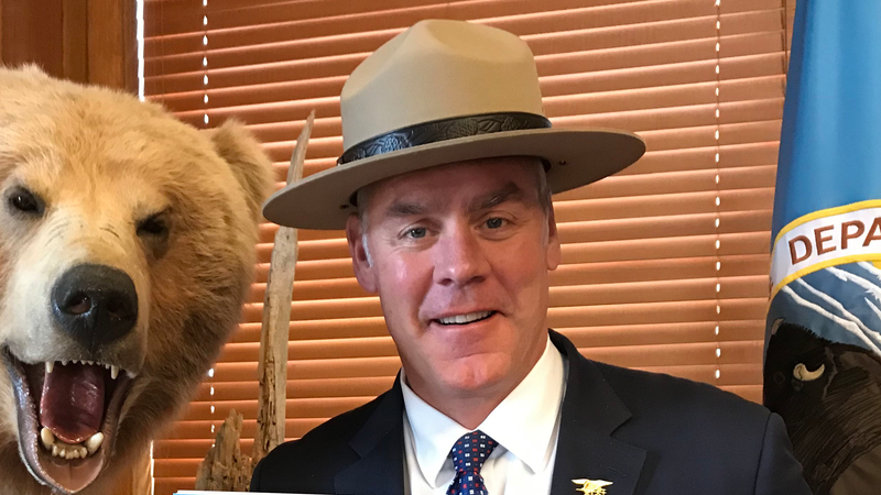 Even the bear is bothered by the hat being worn inappropriately.