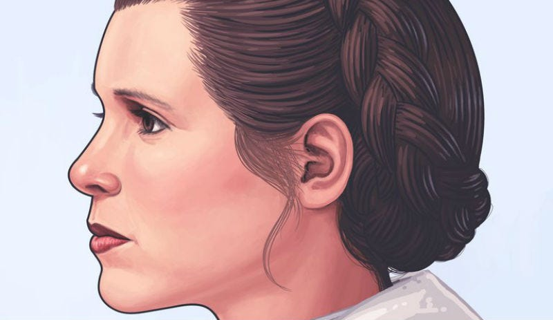 Illustration for article titled When You Buy This Princess Leia Portrait, Proceeds Go to Animal Welfare