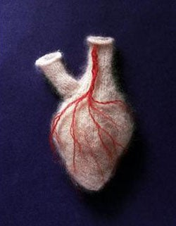 Illustration for article titled A Soft Heart