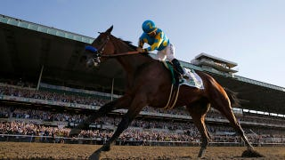 Illustration for article titled American Pharoah Owner Says Horse Will Run Again This Year
