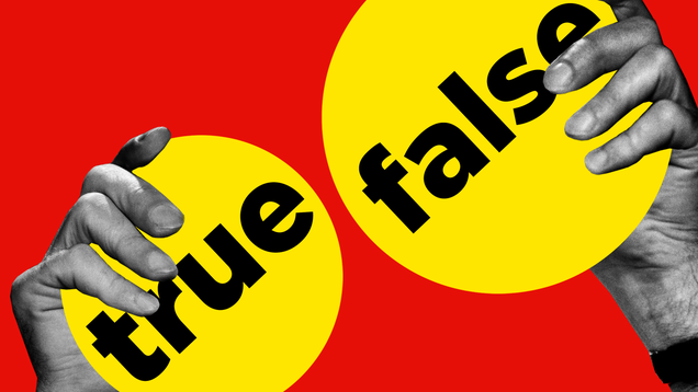 5 Things I Learned as BuzzFeed Quizzes  Unofficial Fact-Checker