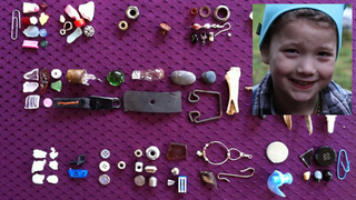 Illustration for article titled All These Gifts Were Given To An 8-Year-Old Girl By Crows