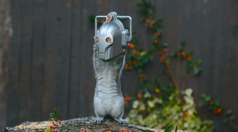 Illustration for article titled This Cyberman Feeder Turns Squirrels Into The Doctor's Deadly Foes