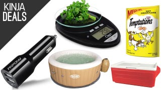 Today's Best Deals: Cheap Hot Tub, Pet Treats, Kitchen Scale, and More