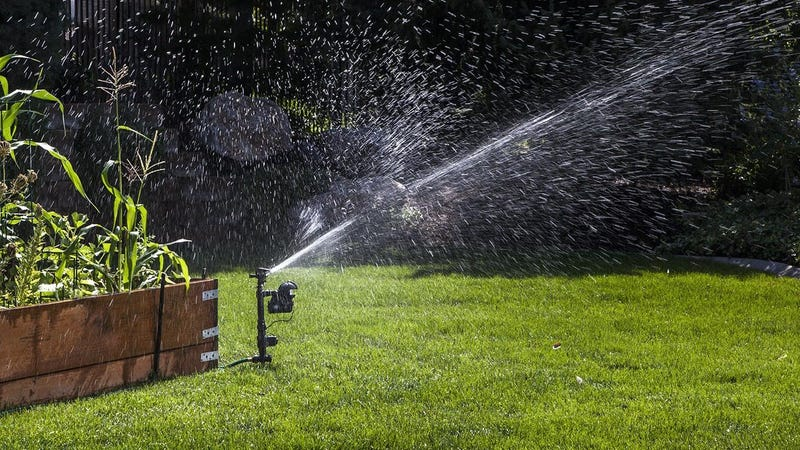 Orbit Yard Enforcer Motion-Activated Sprinkler | $55 | Amazon