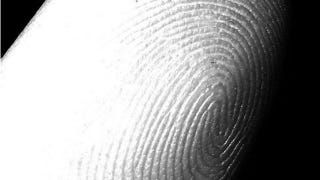 Illustration for article titled Log Into Ubuntu with Your Fingerprint