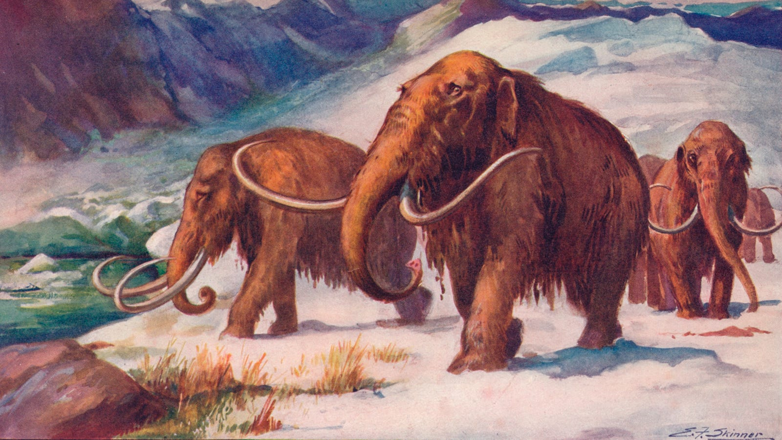 Science finds a way to bring back extinct animals