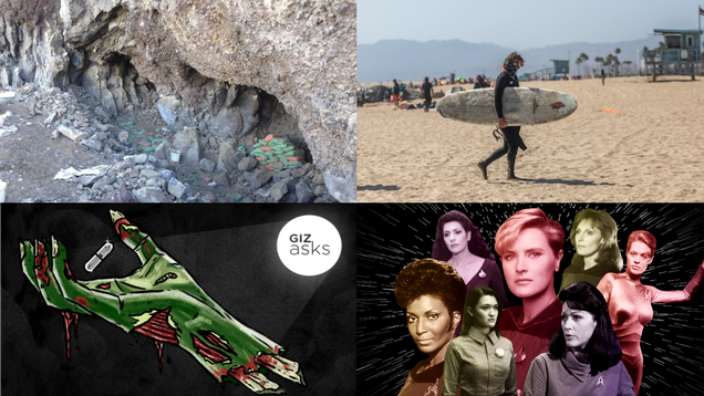 A 14,000-Year-Old Human Poop and the Best Human Brain Alternative: Best Gizmodo Stories of the Week