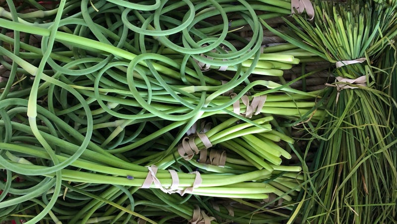 Illustration for article titled How to use garlic scapes in your cooking