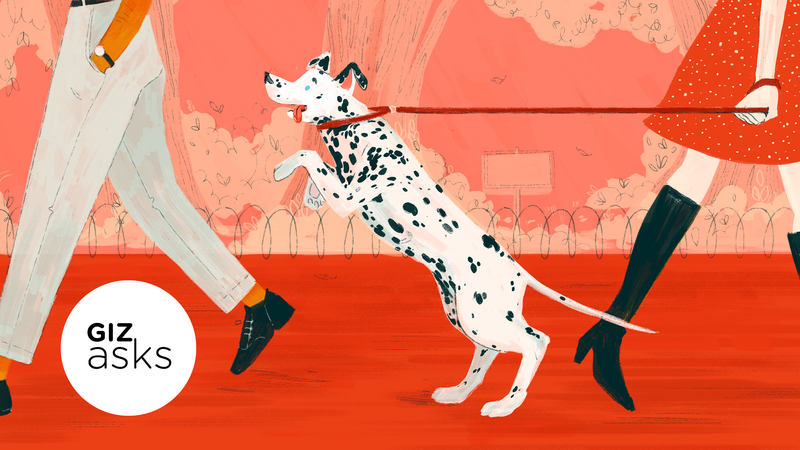 Illustration for article titled Do Dogs Forget Their People?