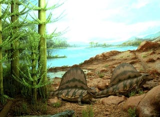 Illustration for article titled Why did nearly all life on Earth die 250 million years ago?