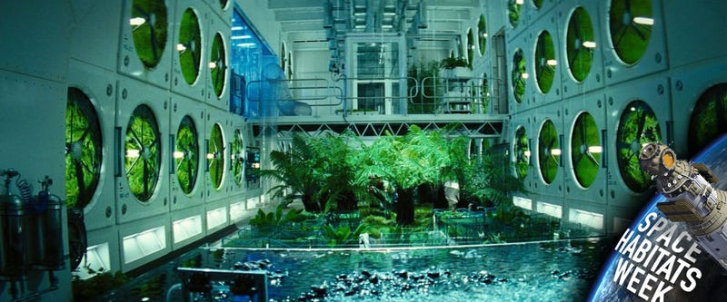 The most important thing we will need to survive in space for Outer space gardens