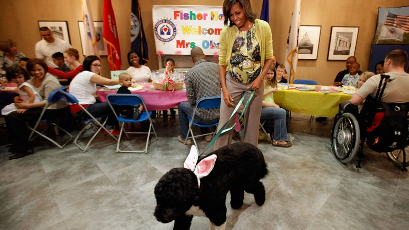Illustration for article titled Michelle Obama and Bo the 'Easter Bunny' Visit Wounded Vets and Their Families