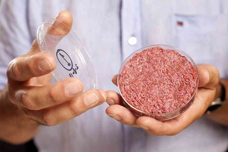 Illustration for article titled The Future Will Be Full of Lab Grown Meat