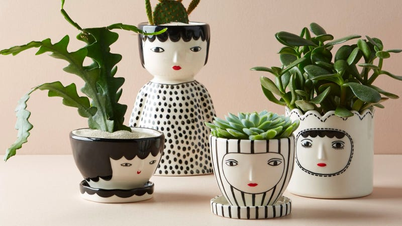 Illustration for article titled Someone Please Tell Me To Stop Buying Planters With Faces On Them