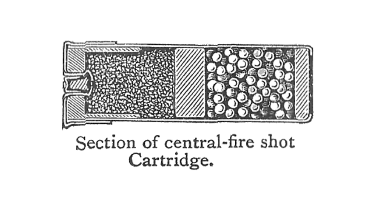 Superb Whats Inside A Shotgun Shell And Why Wiring 101 Tzicihahutechinfo