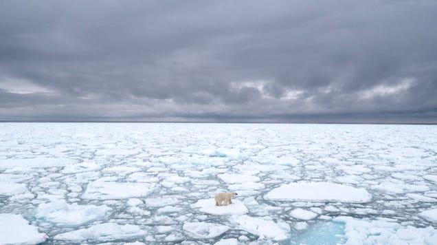 Arctic Sea Ice Hit a Scary Milestone