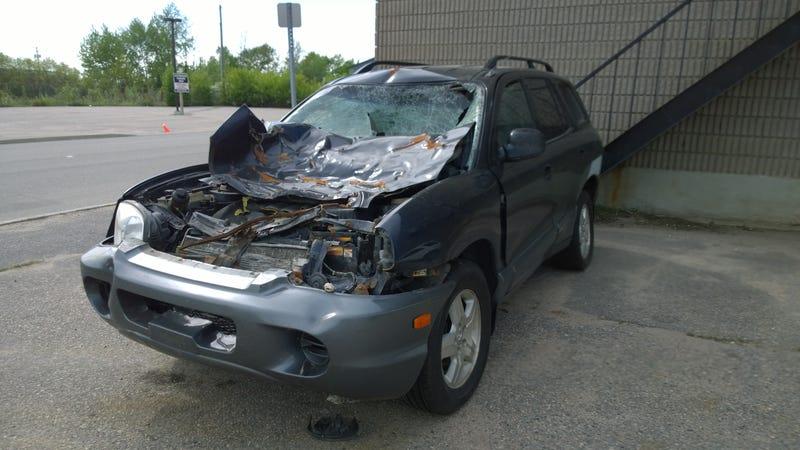 Illustration for article titled Moose vs. Car Aftermath