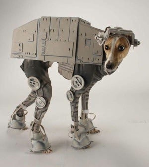 Illustration for article titled Dog Sacrifices Dignity In the Service of This Star Wars AT-AT Costume