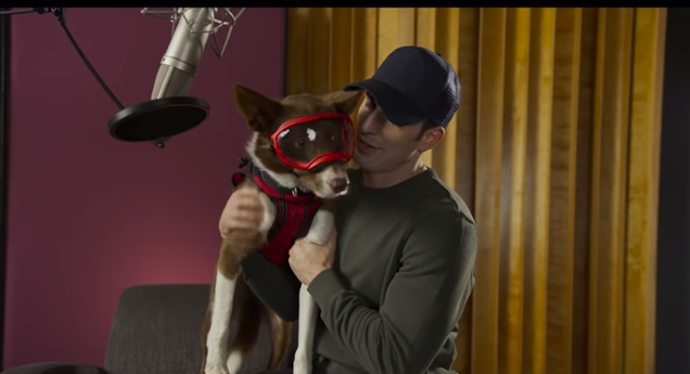 Please enjoy this trailer of Chris Evans saying some very nice things about some very good dogs