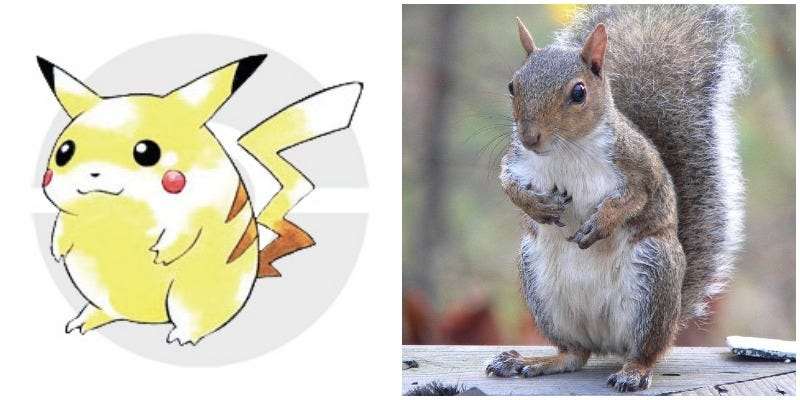 Illustration for article titled Pikachu Wasn't Based On A Mouse, But A Squirrel