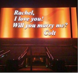 Illustration for article titled Colt McCoy's Proposal Is Hotter Than Shrimp Vindaloo