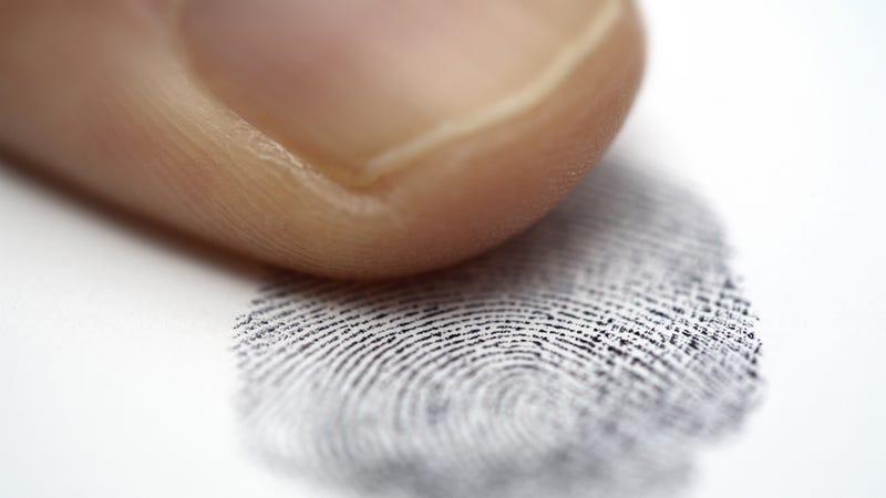 Illustration for article titled Your Fingerprints Can Now Reveal Your Raging Coke Habit