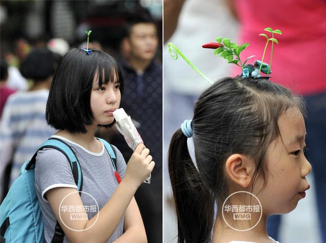 """Sprout Heads"" Are a Trend in China"