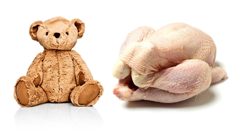 Illustration for article titled Behold the bacterial horror of a teddy bear made from raw chicken