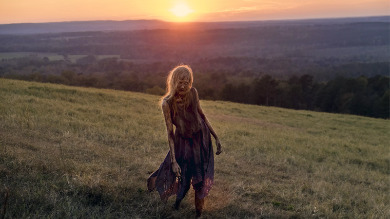 Here's a weirdly artistic picture of a zombie from The Walking Dead's last season. Pretty, isn't it?