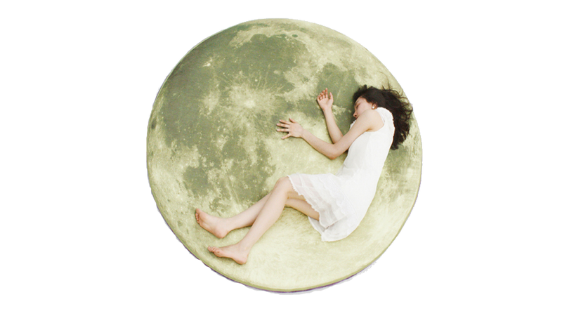 Illustration for article titled Take a Nap on the Moon for $2000