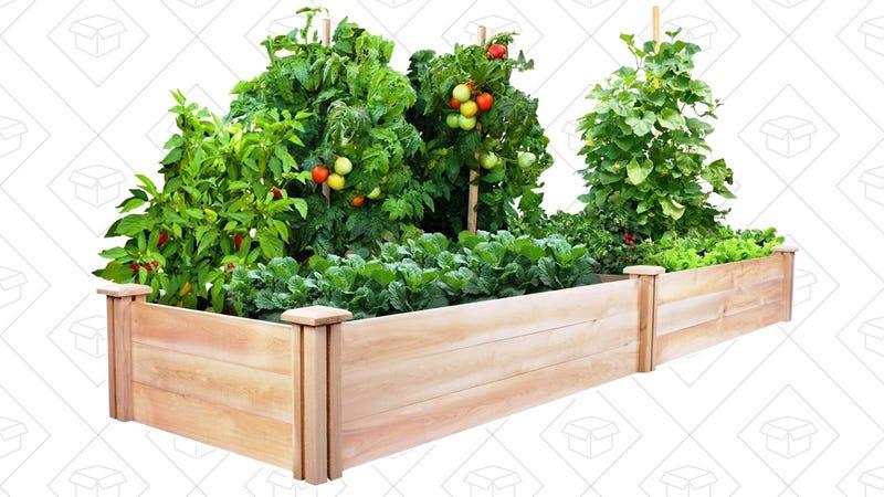 Cedar Raised Garden Kit, $69