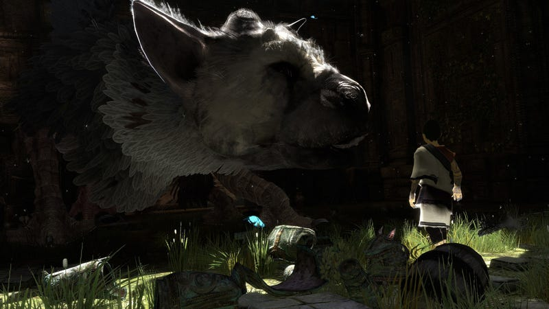 Illustration for article titled The Last Guardian Looks So Pretty It Hurts