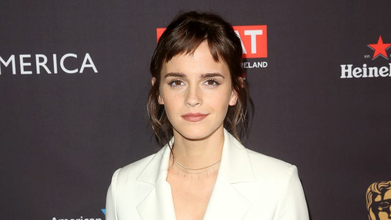 Illustration for article titled Emma Watson Launches Free Legal Hotline for Workplace Sexual Harassment Advice