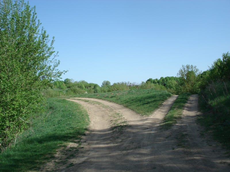 Even if both paths lead to the same destination, they provide unique experiences