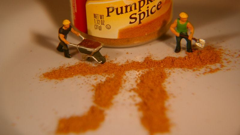 Illustration for article titled Save Money by Making Your Own Pumpkin Spice Mix