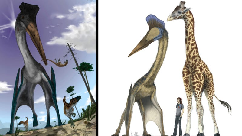 Illustration for article titled What would life be like if pterosaurs were alive today?