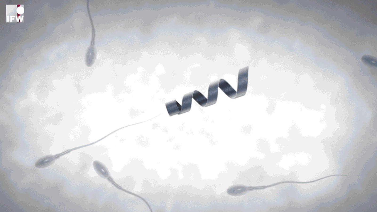 Spermbot, un nanorrobot que ayuda a los espermatozoides vagos a fecundar el óvulo