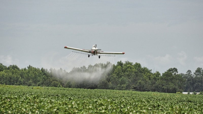 County's aerial spraying for mosquitoes kills millions of bees