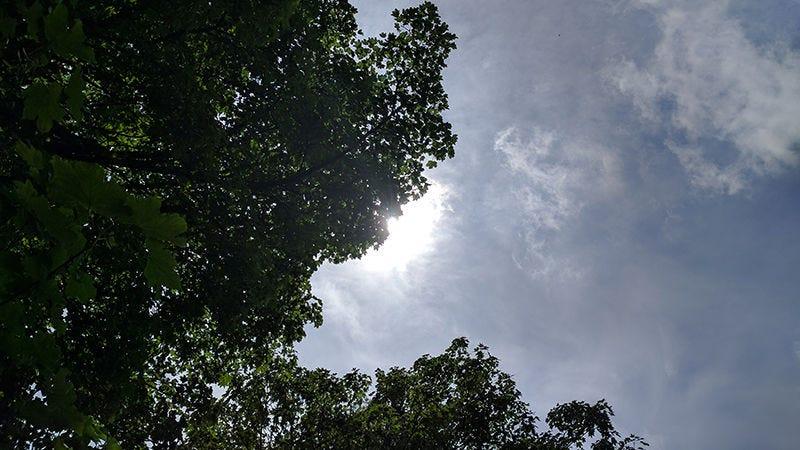 luz natural mejores fotos