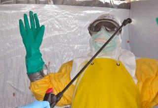 Illustration for article titled Ebola helyett maláriagyanúval kezelnek egy nigériai férfit Debrecenben
