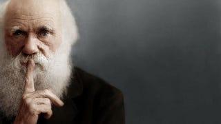 "Illustration for article titled New resolution would see ""Darwin Day"" recognized this coming February 12"
