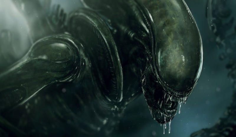 Illustration for article titled Las futuras secuelas de la saga Alien ignorarán lo sucedido en Alien 3 y Alien: Resurrection