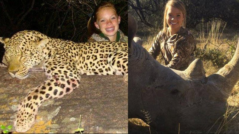 Illustration for article titled Facebook Shuts Down Page Calling for Lion-Hunting Cheerleader's Murder