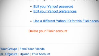 Illustration for article titled Flickr Now Lets You Change Your Mind if You Delete Your Account