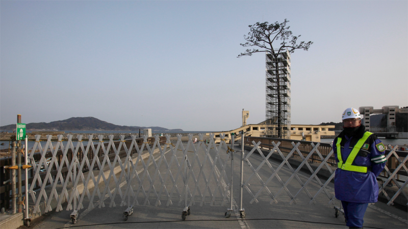 Illustration for article titled Japan Turned the One Surviving Tsunami Tree Into a Gigantic Sculpture