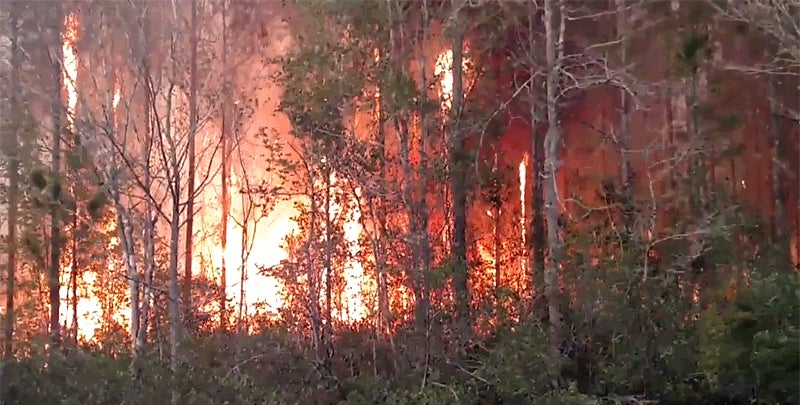 Multiple Agencies Fighting Fire Near Bryceville, Florida