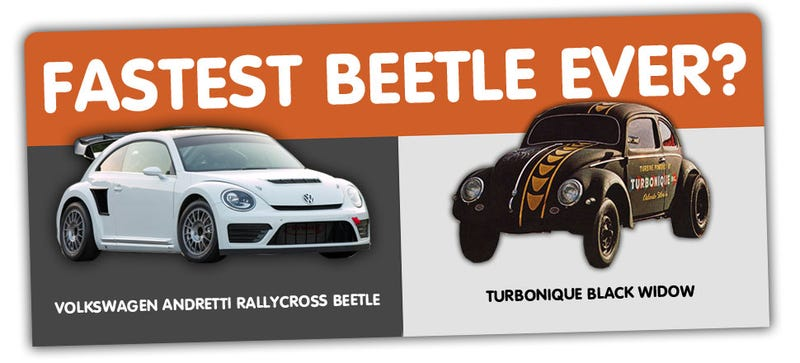 Illustration for article titled What's The Fastest Beetle Ever?